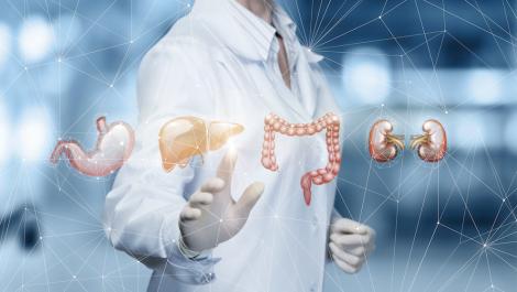 Chirurgie viscérale et digestive